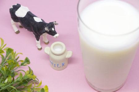 牛乳やヨーグルトを普段よりひとつ多めに買おう!